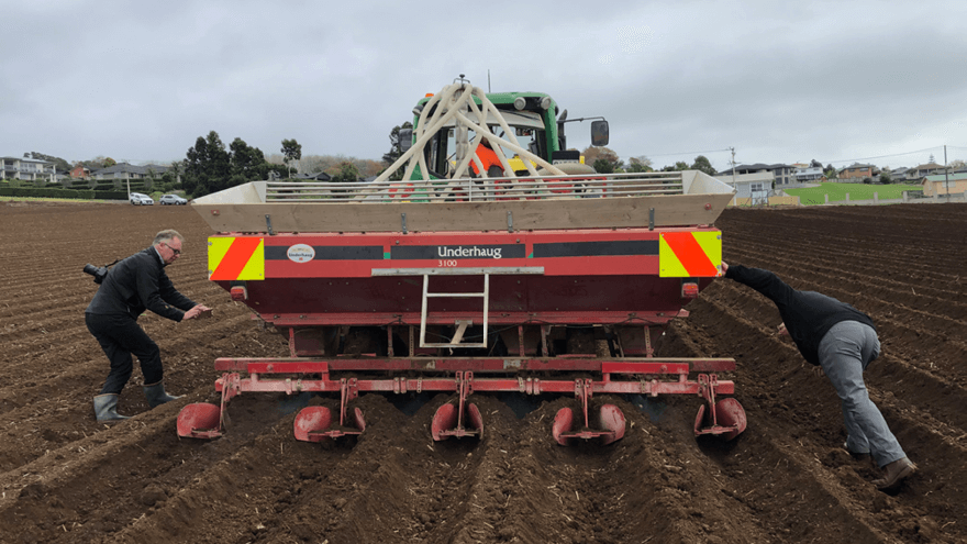 Potato planting is an ideal time for disease control
