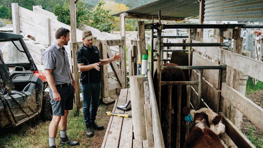 Herd monitoring data drives profitability