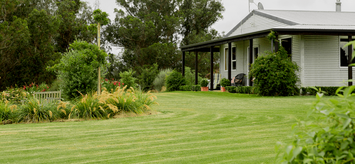 Lawn and Turf