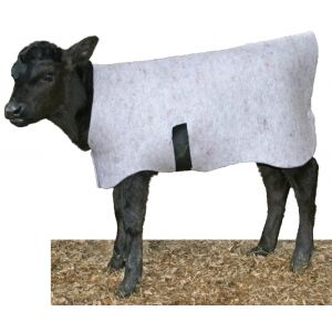 Arion Cosy Coat Calf Covers each