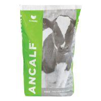NZAgbiz Ancalf Calf Milk Replacer 20 kg