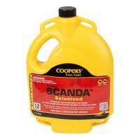 Coopers SCANDA